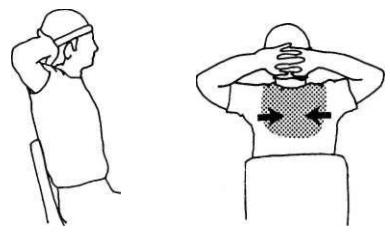 Снятие напряжение в мышцах плечевого пояса