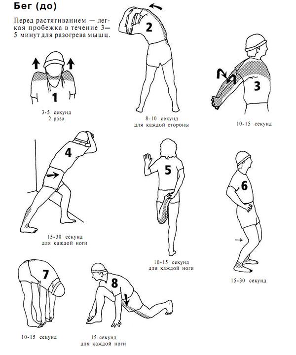 Упражнения для на растяжку в домашних условиях для начинающих фото