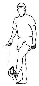 Циркуляция крови в ногах