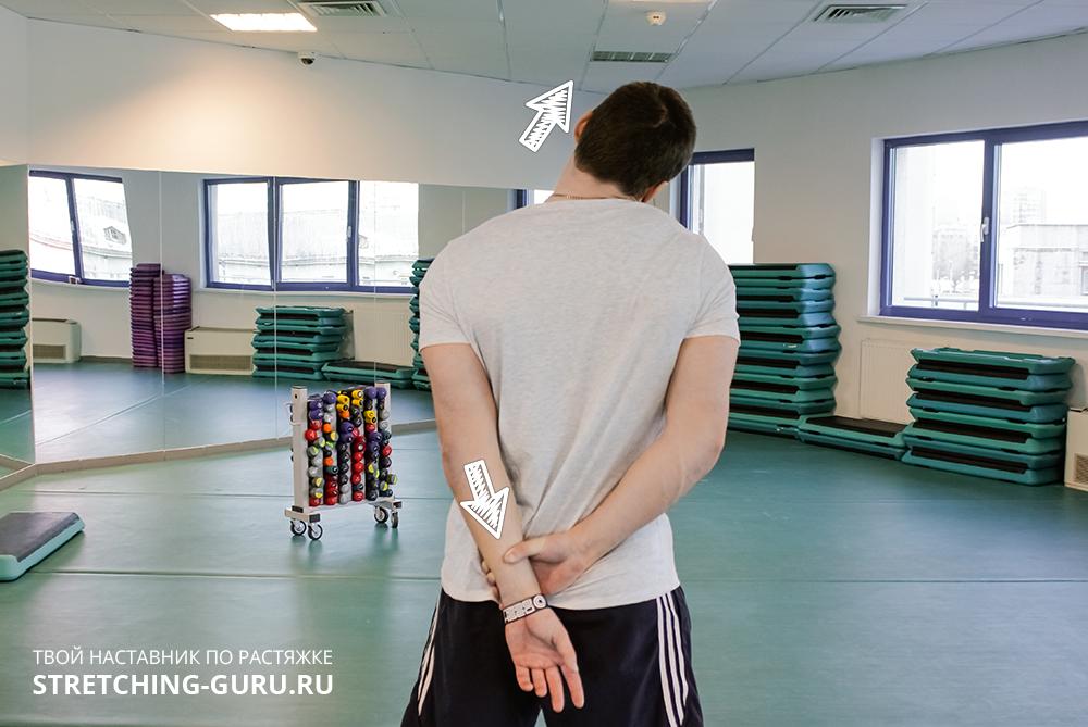 Упражнение для растяжки боковой части шеи.